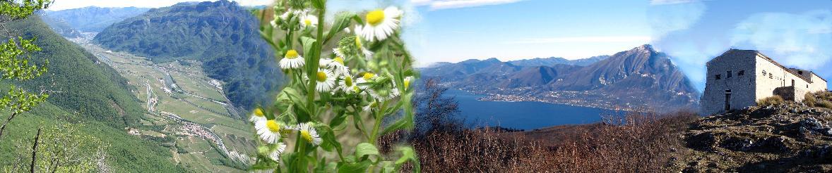clicca qui e scopri l'incantevole provincia di Verona